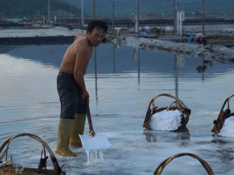 花岙岛盐农工作刻苦。