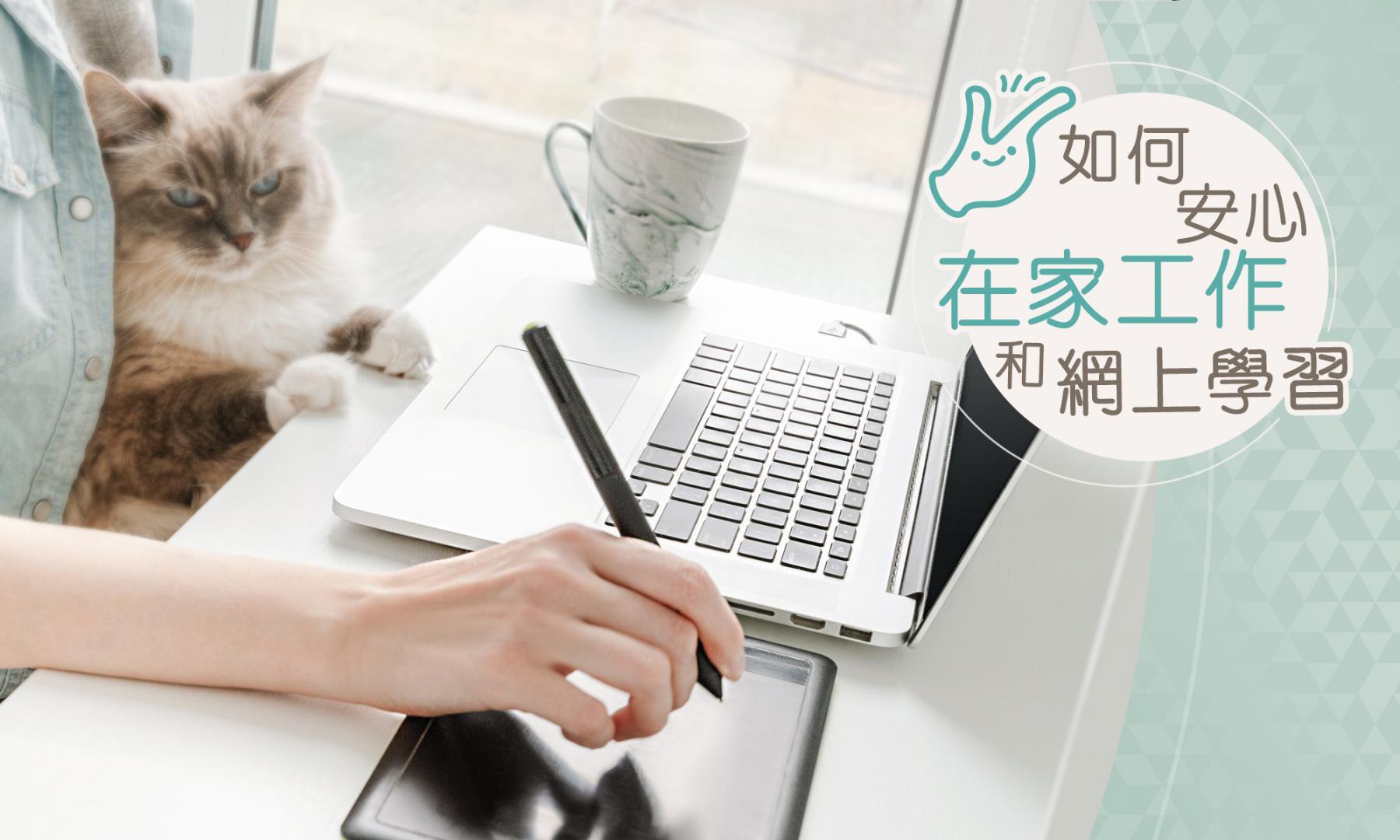 如何安心在家工作和网上学习