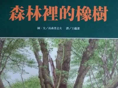 《森林里的橡树》