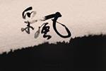 《采风》- 南北戏曲缘